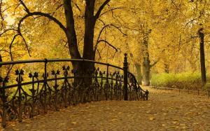 Кованная ограда моста на фоне желтых деревьев