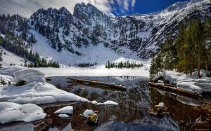 зеленые сосны и снежные горы