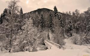 мост через овраг засыпало снегом