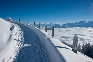снежная дорога и белые дали