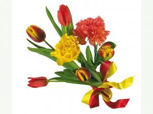Красивый букет тюльпанов и астр