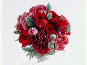 Очень красивый букет  розы и астры